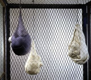 16 Louise Bourgeois Cell XIX