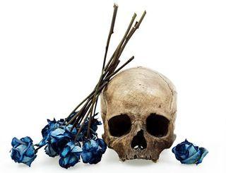 David-bailey-human-skull-with-blue-rose-2009