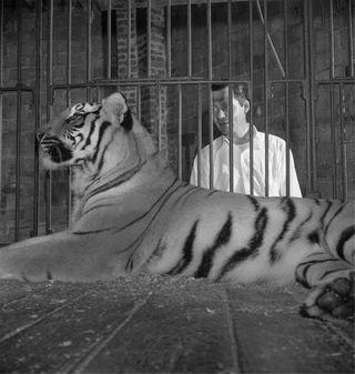 Stanley_kubrick_circus_1948