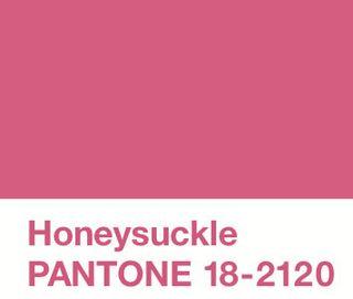 WB10_pantone-honeysuckle