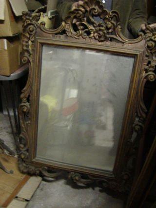 Leopard_Mirror_ArchivioGarzia_byABattista