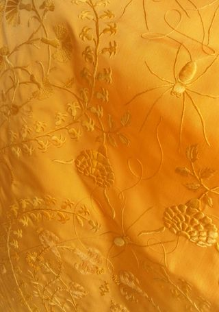 GoldenSpiderSilk_V&A