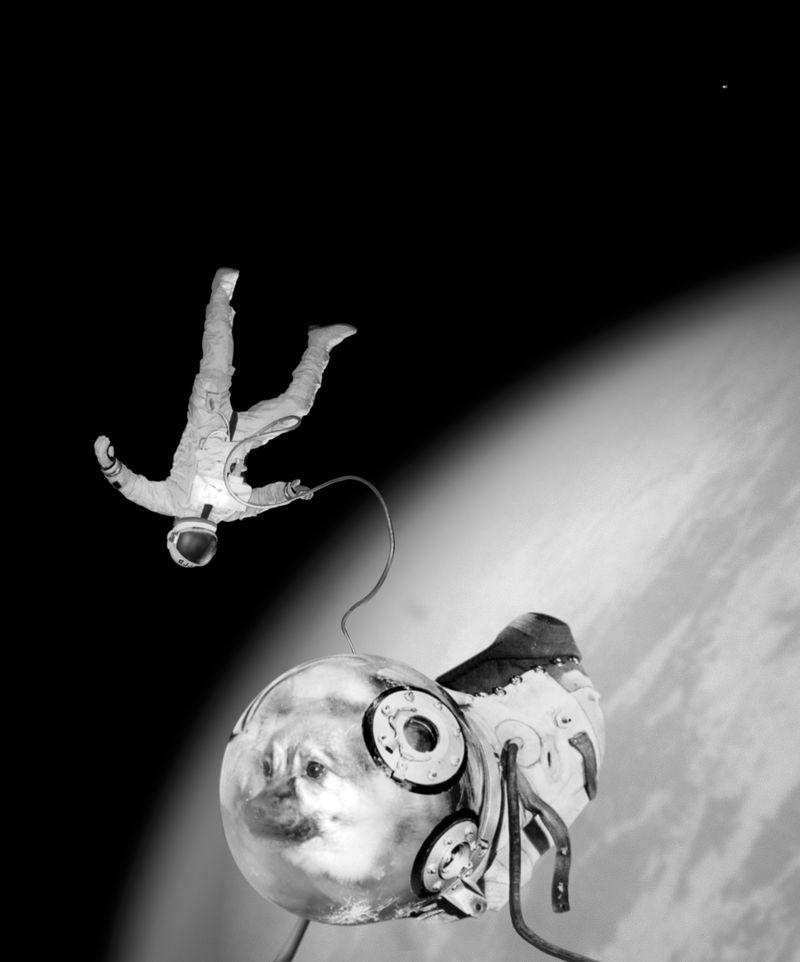 Press1997-sputnik-chien