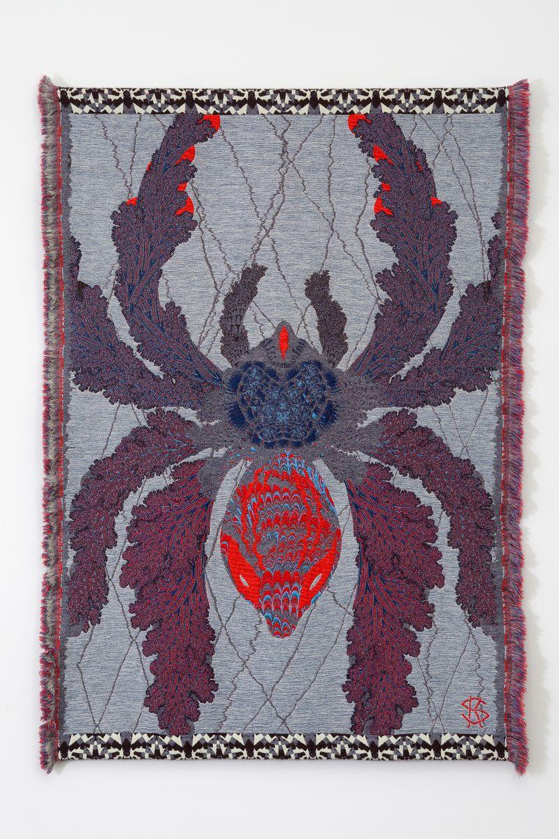 Arachne's Web_2013