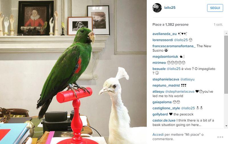 Gucci_AMichele_Instagram
