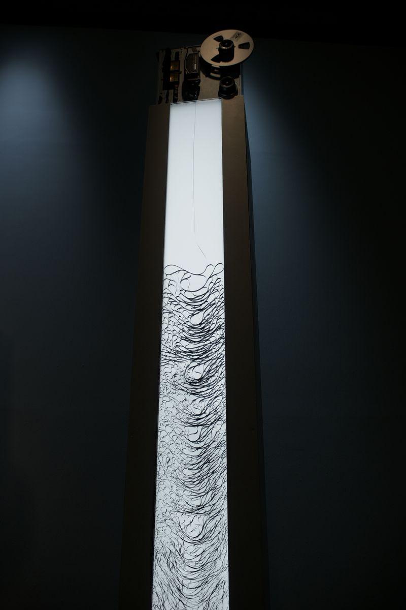 Toki ori ori nasu (3)