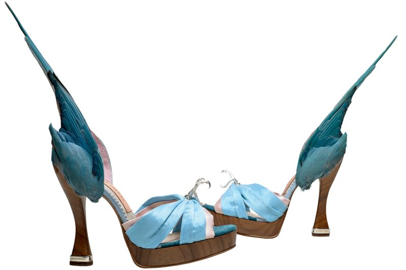 3._Caroline_Groves_b.1959_Parakeet_shoes_Photography_by_Dan_Lowe