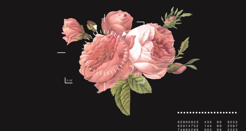 Chalayan_SS17_rose