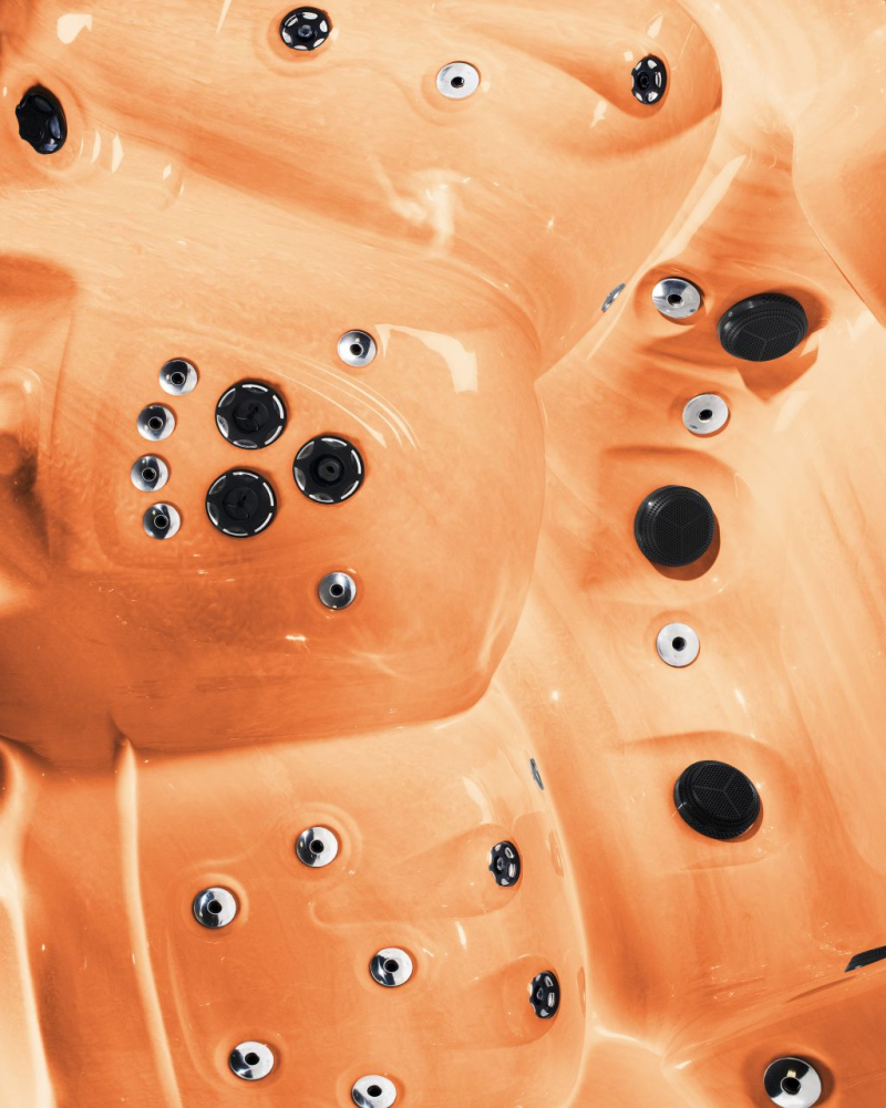 Coral, Technological Exaptation, 2016 © Maxime Guyon