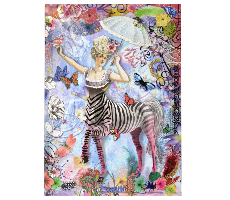 Zebra Girl B5 Hardcover Journal