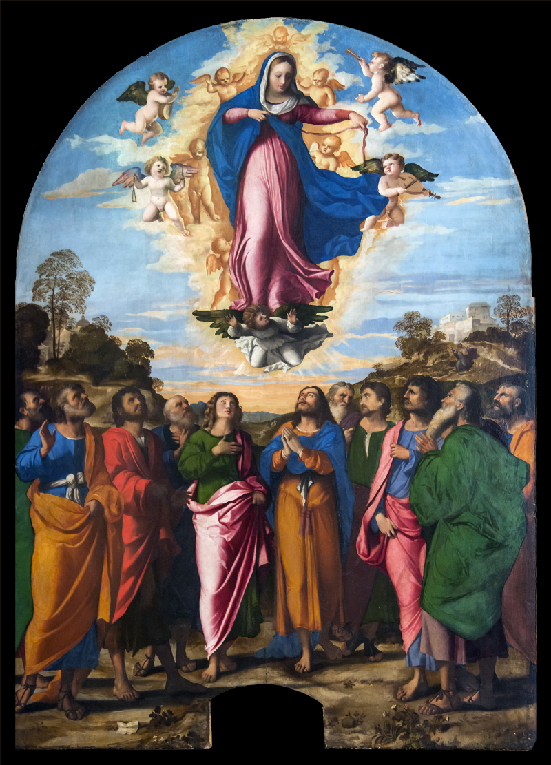 Accademia_-_Assumption_of_the_Virgin_by_Palma_il_Vecchio