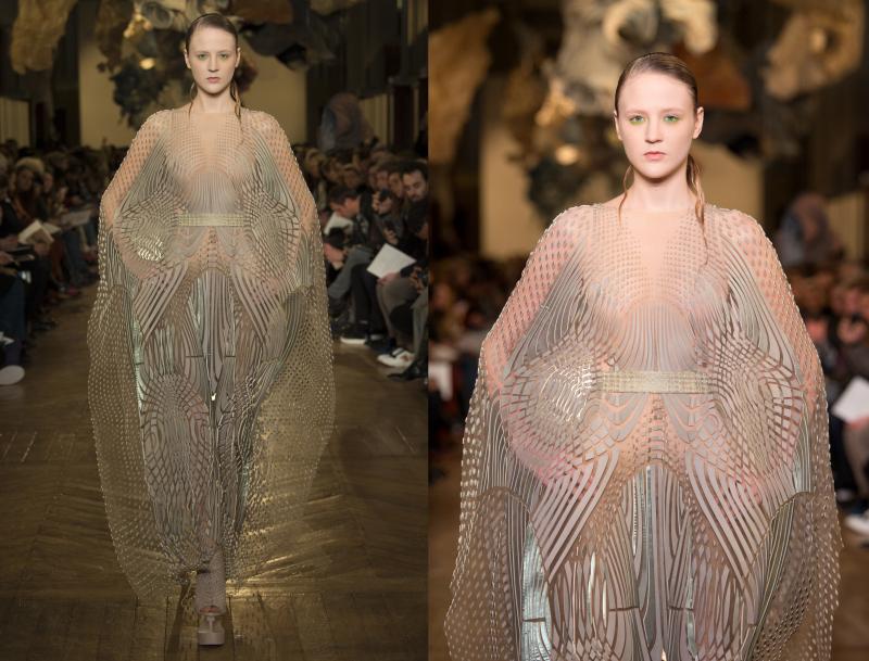Ludi Naturae: Iris Van Herpen Haute Couture S/S 18 - Irenebrination ...