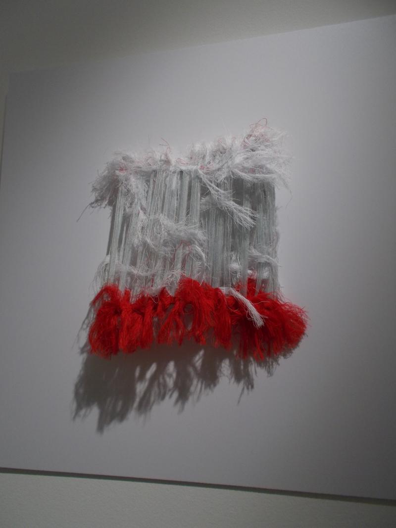 Brigitte Bouquin-Selles_PalazzoMocenigo_byAnnaBattista (2)