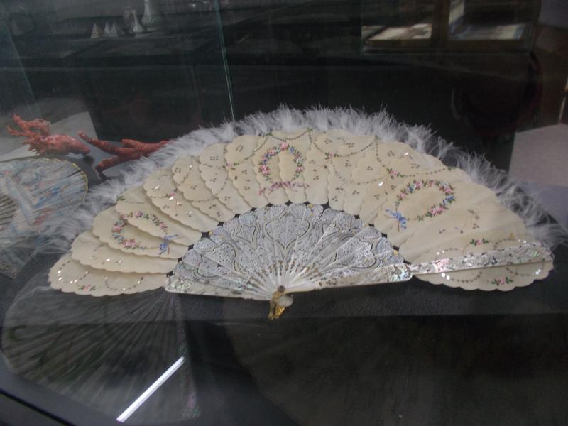 MuseoMalacologia_CupraMarittima_Part2_byAnnaBattista (206)