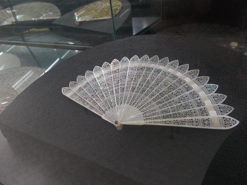 MuseoMalacologia_CupraMarittima_Part2_byAnnaBattista (193)
