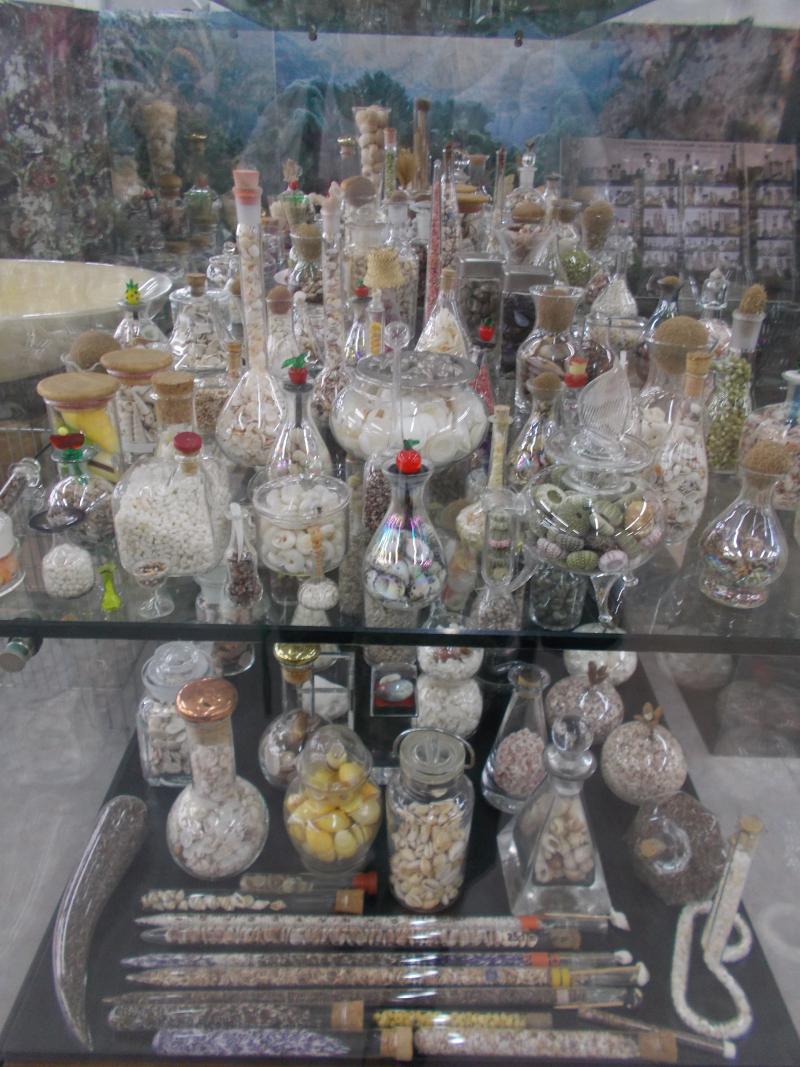 MuseoMalacologia_CupraMarittima_Part2_byAnnaBattista (380)