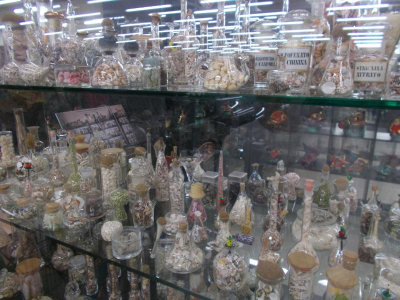 MuseoMalacologia_CupraMarittima_Part2_byAnnaBattista (382)